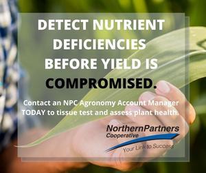 Detect Nutrient Deficiencies